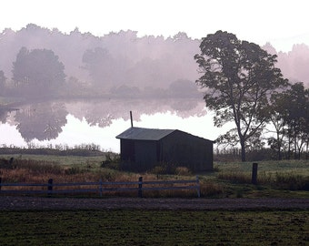 Pond in the Mist