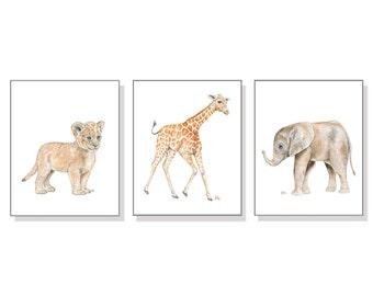 Boy Nursery Decor Boy Nursery Print Boy Nursery Art Boy Room Wall Art Baby Boy Art Baby Animal Safari Jungle Zoo Elephant Giraffe Lion 3 Set