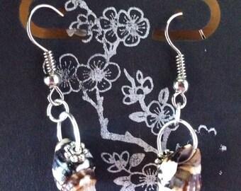 Hawaiian Small Brown Shell Earrings