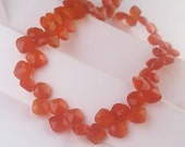 "AAA Carnelian Beads Faceted Carnelian Agate Briolette Diamond Square Drop Beads Diamond 8"" Strand Free Ship CN5V4F0003"