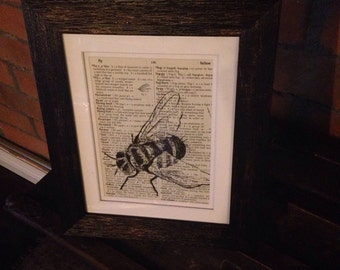 Original Artwork: Fly on Vintage Dictionary Paper