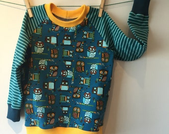 Sweatshirt with owls and striped sleeves, 104 mt