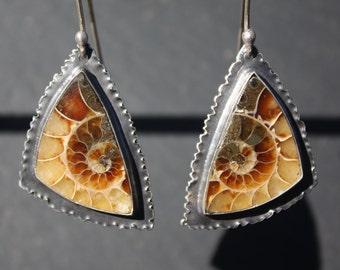 Ammonite, Fossil, Sterling Silver, Dangle Earrings