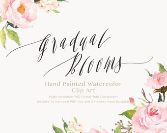 Watercolor flower Clip Art-Gradual Blooms/Individual PNG files/Hand Painted/wedding