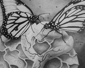 Monarch Butterfly Drawing, Graphite pencil Butterfly Art, Butterfly Pencil Drawing, Original Pencil Drawing.
