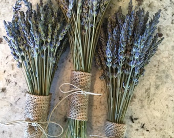 Grosso lavender bunches, very fragrant, georgous lavender color ,great wedding decor,