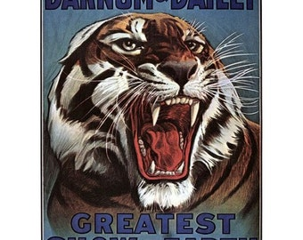 Tiger Circus Posters - Big Cats Show - Barnum & Bailey Greatest Show On Earth Vintage Circus Print