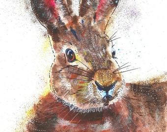 SFA Rabbit A4 Print