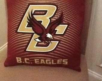 16 X 16 College Pillow Cover
