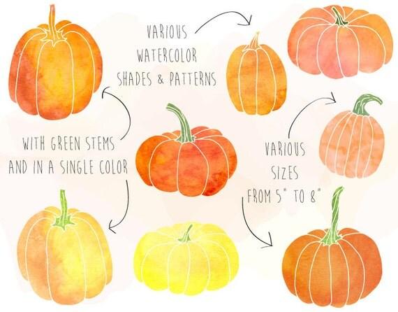 Watercolor pumpkin clipart hand drawn thanksgiving