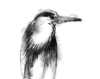 Grey heron | Limited edition fine art print from original drawing. Free shipping.