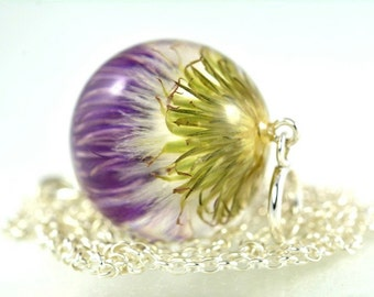 Pendant with real inflorescence of thistle (Carduus acanthoides) in resin sphere. Sphere 2.5 cm. Chain 80 cm.