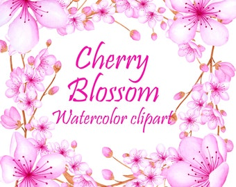Cherry blossom clipart, Watercolor cherry blossom, Watercolor flowers clip art, Cherry flowers clipart, Pink blossom clipart, Hand painted