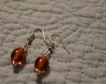 Handmade Brown transparent earrings