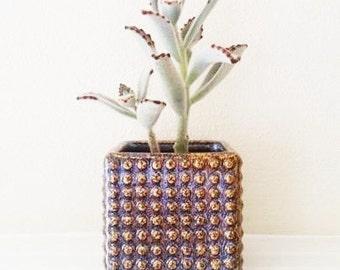 Hobnail ceramic cube planter, small square hobnail planter, irridescent purple brown, small succulent pot