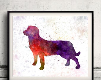 Entlebuch Cattle Dog in watercolor 8x10 in. to 12x16 in. Fine Art Print Glicee Poster Decor Home Watercolor Illustration - SKU 1206