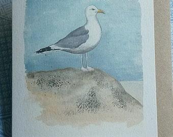 Herring Gull Card. Sea bird card. Bird card. Norfolk. Seaside. Nautical. Seagull card. British bird. Recycled card