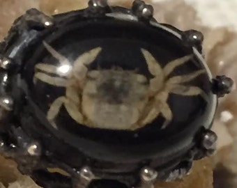 Vintage Hauntingly Beautiful Sterling Crab Statement Ring   Reduced from 85.00 Pre Halloween Sale