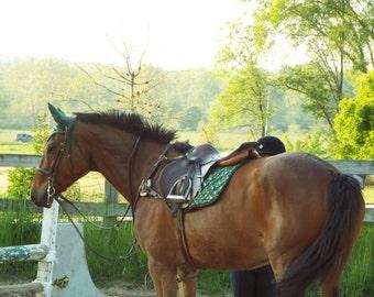 SEF Custom Saddle Pad