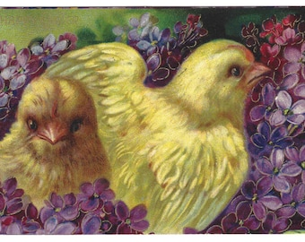 Antique Embossed Easter Postcard 1910 Chicks Floral Easter Greetings
