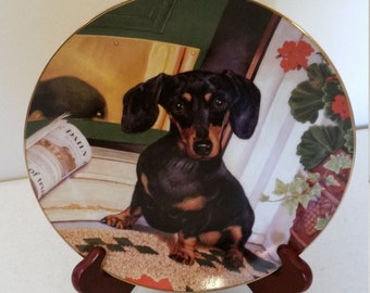 vintage limited edition dachshund hound collector plate # b8763 by christopher nick and danbury mint - wiener dog - low issue number