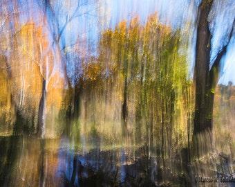 Autumn Impressions Fine Art Print
