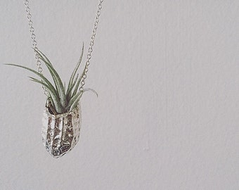 Silver Peanut Necklace with Live Plant