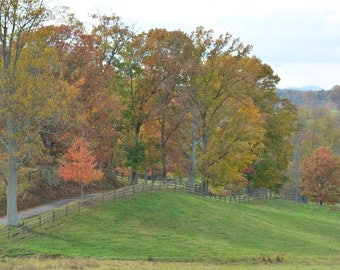 Fall In Middleberg, Virginia, USA  #601