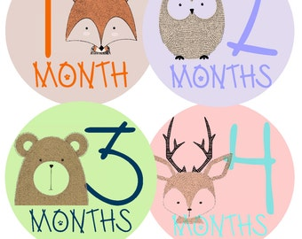 Baby Month Stickers Monthly Baby Stickers Baby Monthly Stickers Baby Milestone Sticker Milestone Stickers Month Stickers Baby Stickers Month