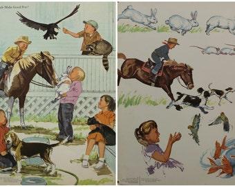 Vintage educational school posters