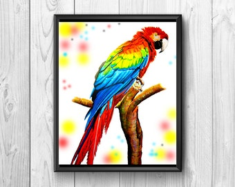 Parrot Tropical by colorful bright colors, .marvel of nature