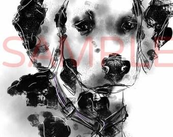 Dalmatian - A4 print