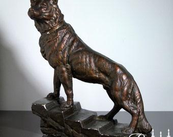 Très grand et lourds Français Vintage en plâtre Sculpture d'alsacien ou chien de berger allemand. Finition en bronze. Comme un loup. Belle Expression