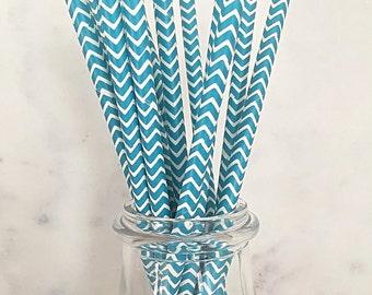 Blue Paper Straws (25)