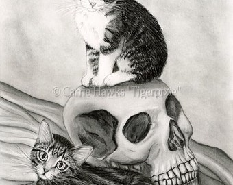 Witch's Cat Art Cat Drawing Tabby Kittens Cats Skull Gothic Fantasy Cat Art Limited Edition Canvas Print 11x14 Art For Cat Lover