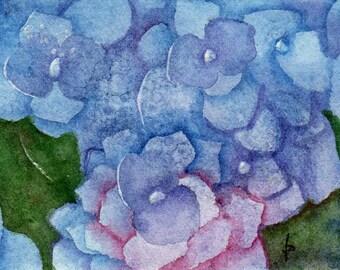 ACEO watercolor BLUE hydrangea original painting SFA miniature flower macro dollhouse mini