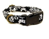 L.A. Noire -  Black White Vintage Damask Dramatic Regal Girl Organic Cotton CAT Collar Breakaway Safety - All Antique Brass Hardware