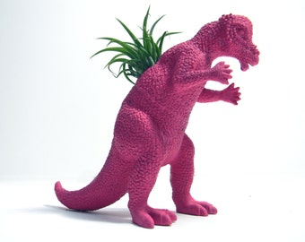 Air Plant Dinosaur Planters with Air Plant Hot Pink