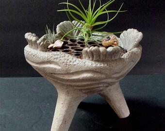 Carved Concrete Bowl Planter Lotus Air Plant Centerpiece