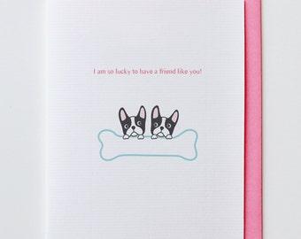 Boston Terriers Friendship Card - Funny, Unique, Cute, Kawaii, Animal Card, Friendship Card