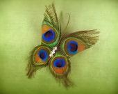 Butterfly barrette peacock feather hair clip garden party hair butterflies butterfly wedding butterfly accessories fun hair clip for girls