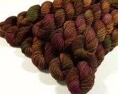 Sock Yarn Mini Skeins - Hand Dyed Yarn - Sock Weight 4 Ply Superwash Merino Wool Yarn - Clove Multi - Knitting Yarn, Brown Autumn Fingering
