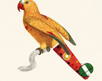 Yellow Parrot - Limited Edition Print