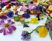 Petal Confetti, Dried Flowers, Flower Petals,  Confetti,  Wedding Decoration, Tossing flower, Aisle Decor, Rustic, Biodegradable, 24 US cups