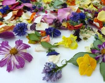 Bulk Petal Confetti, Real Dry Flowers, Flower Petal, Wedding Decoration, Flower Girl, Aisle Decor, Craft Supplies,  Biodegradable, 6 US cups
