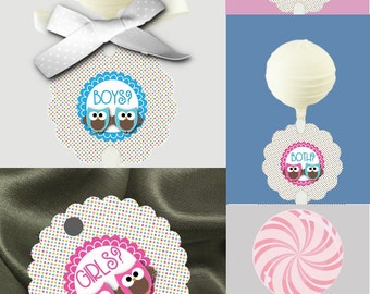 12 Cake Pop Tags, Sucker or Lollipop Tags, For TWINS,  Baby Gender Reveal Party, Baby Shower Decorations, Twin Pink & Blue Baby Owls