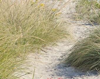 Nature Photography, Flip Flop Prints, Beach Scenes, Coastal Art, Fine Art, Bathroom Beach Decor, Small Art, Summer Cottage Decor, 16x20, 5x7