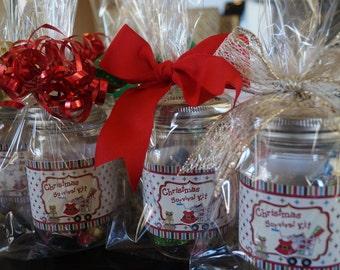 Christmas Survival Pint Jars, custom and personalized sets, Gift in a Jar, Christmas Jars, Christmas Mason Jars, Christmas Gifts. Set of 2.