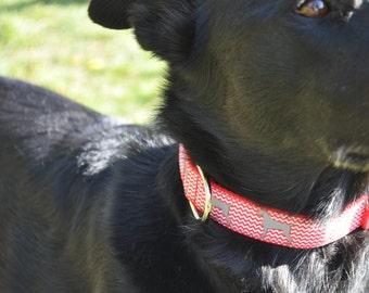 Dog Collar - Red Dog - 50% Profits to Dog Rescue