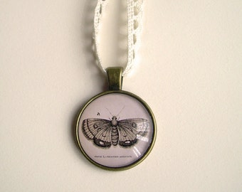 Moth Cameo Necklace